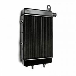 Aprilia RSV 1000 Tuono R 02-05 aušinimo radiatorius